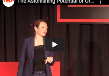 Tedx: The Astonishing Potential of Offshore Wind